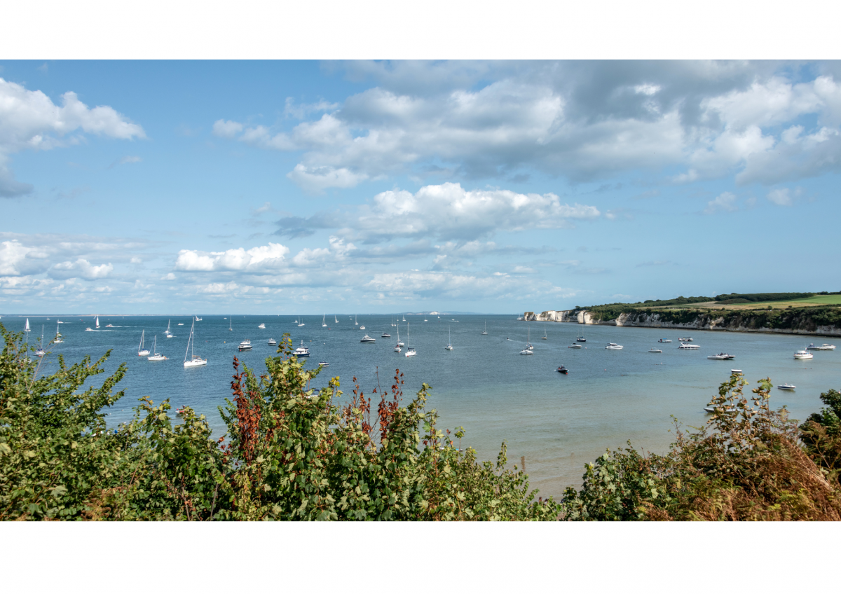 Studland Bay MCZ Public Engagement Event – 25th March at 7pm